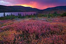 Wonder Lake Denali