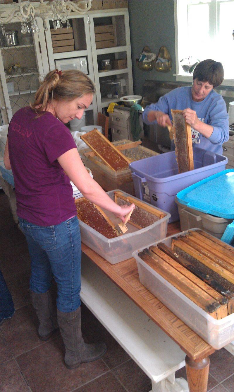 Extracting in Honey House uIMAG2635 04-20-12